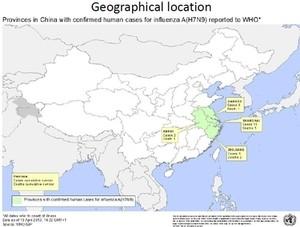 Китай, вирус, птичий грипп, Россия, H7N9