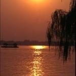 В черной китайской реке находят черную рыбу