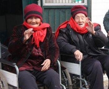 семья, долгожители, старики