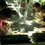 Опасные китайские товары заполняют Европу