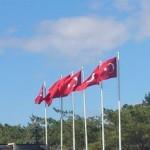 НАТО нервирует сближение Турции с Китаем и Россией