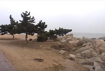 Бэйдайхэ, отдых, Китай, туризм, море
