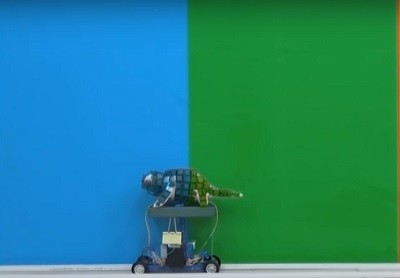 робот, наука, цвет