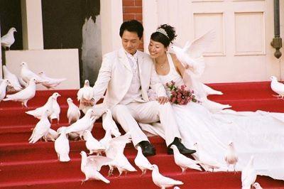 свадьба, жених, невеста,