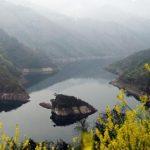 Остров черепахи в Китае показывается людям раз в год (видео)