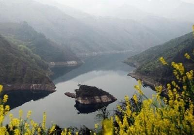 остров черепахи в Китае