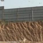 Ласточки остановили стройку в Китае