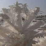 Через 2 000 лет соль станет рыночным продуктом в Китае