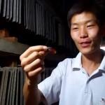 Гигантская армия тараканов в Китае может вырваться на волю