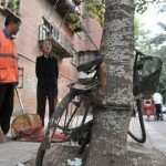 Забытый велосипед вырубали из дерева пожарные