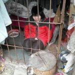 Шокирующая история! Китаянка живет в клетке в лесу 10 лет