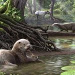 Гигантская выдра жила на территории Китая 6 млн лет назад